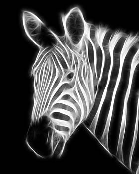 Fractal Zebra by Fenris Oswin