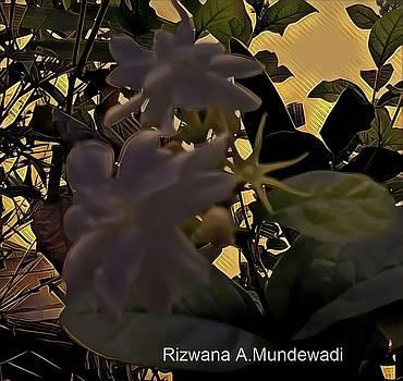 Fragrance of Heavens by Rizwana Mundewadi