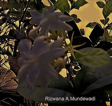 Rizwana A Mundewadi - Fragrance of Heavens