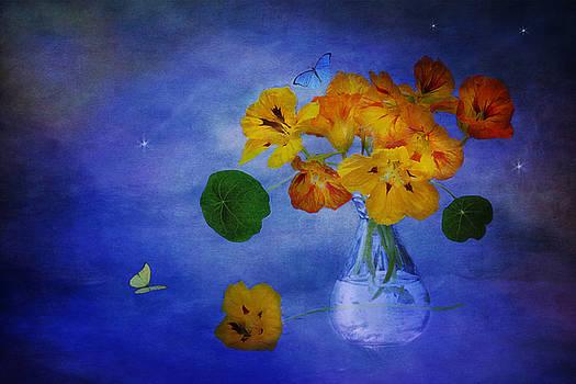Fragrant Night by Marina Kojukhova