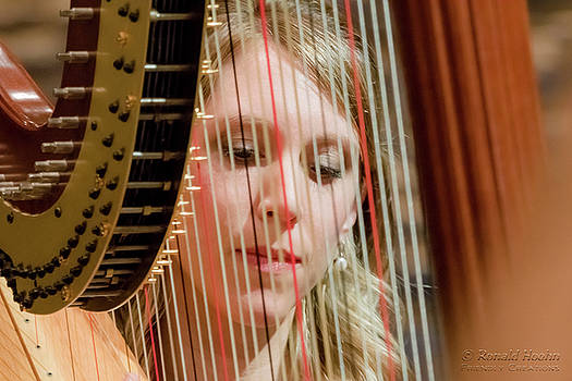 Framed by a Harp by Ronald Hoehn