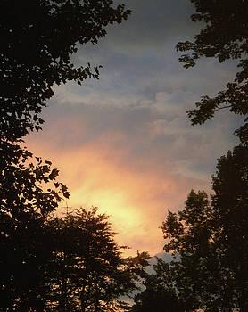 Sandi OReilly - Framed Fire In The Sky