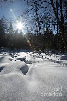 Erin Paul Donovan - Franconia Brook - Lincoln New Hampshire