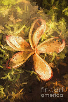 Frangipani digital painting by Jorgo Photography - Wall Art Gallery
