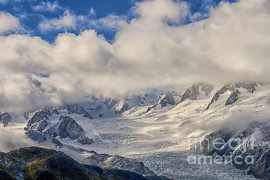 Patricia Hofmeester - Franz Joseph glacier from the air