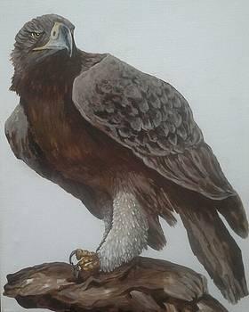 Free As A Bird by Alan Kennedy