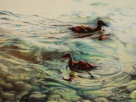 Free as a Duckling by Catherine Robertson