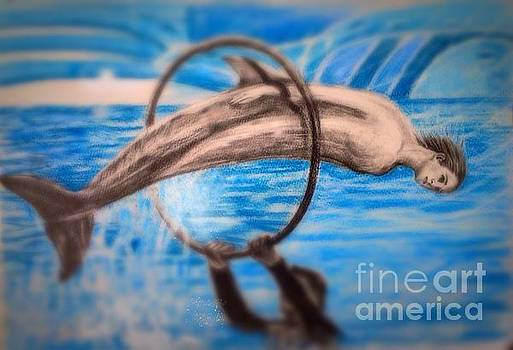 Free dolphin from the dolphin show by Keiko Olds