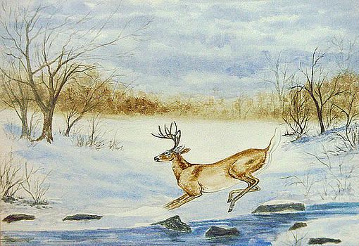 Free Jumper by Pam Hurst