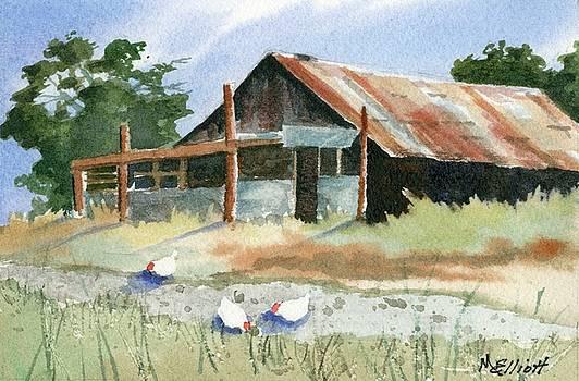 Free Range Chickens by Marsha Elliott