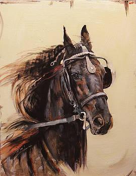 Free Rein 1 by Susie Gordon
