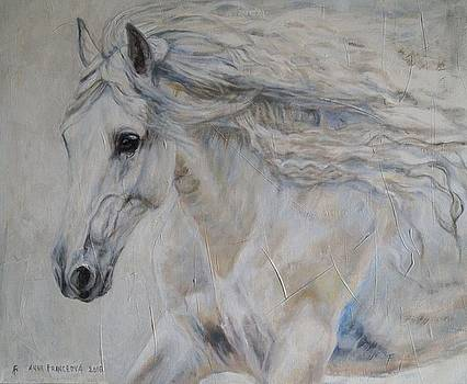 Freedom by Anna Franceova