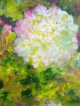 Patricia Taylor - Freedom Carnation Holiday