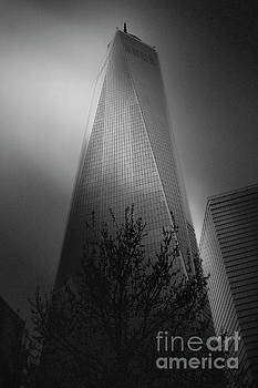 Freedom Tower by Paul Cammarata