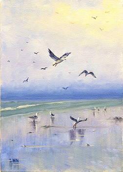 Freely by Ningning Li