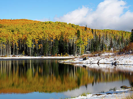 Freeman Lake in Northwest Colorado in the Fall by Nadja Rider