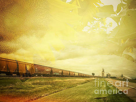 Freight train and Sunflowers Double Exposure by Iryna Liveoak