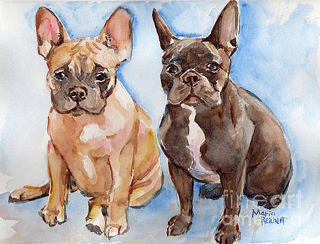 French Bull Dog by Maria's Watercolor