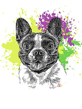 French Bulldog @stellathefrenchiebebe by ZileArt