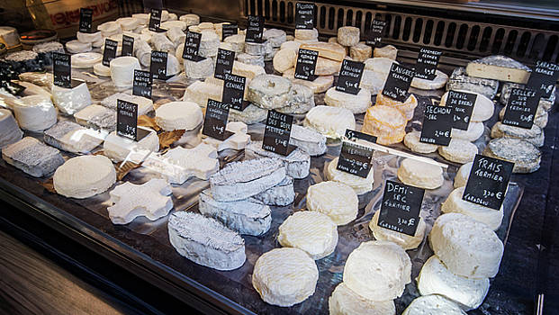 French Cheeses by Alida Thorpe