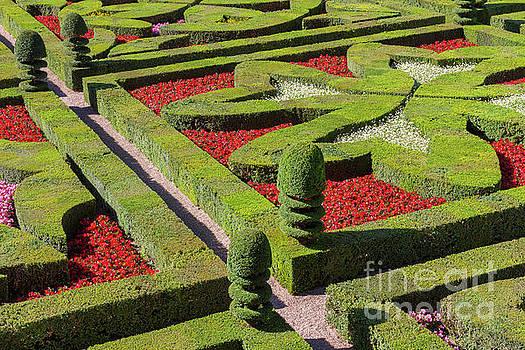 Heiko Koehrer-Wagner - French Garden in Formal Patterns