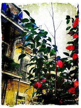 Joan  Minchak - French Quarter View