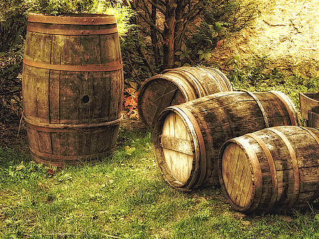 French Wine Barrels 1 by Greg Matchick