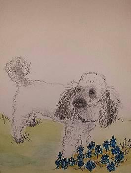 Frenchie by Kathy Sweeney
