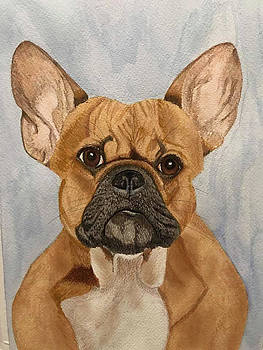 Frenchie by M Marie Art
