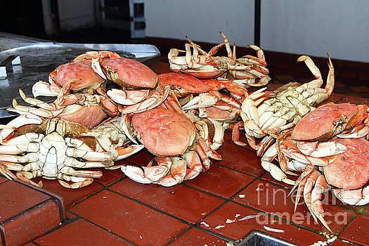 Fresh Cooked Crabs At Fishermans Wharf San Francisco California 7D14459 by San Francisco
