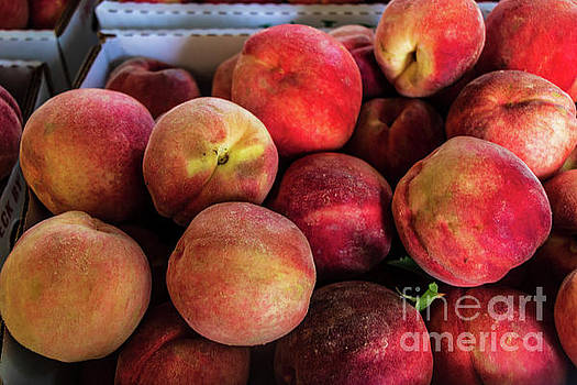 Fresh Peaches by Thomas Marchessault