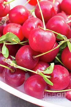 Edward Fielding - Fresh picked cherries