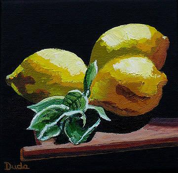 Fresh Picked by Susan Duda