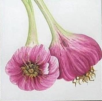 Fresh Red Garlic by Elizabeth H Tudor