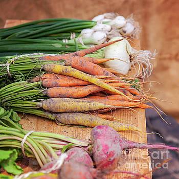 Sophie McAulay - Fresh root vegetables