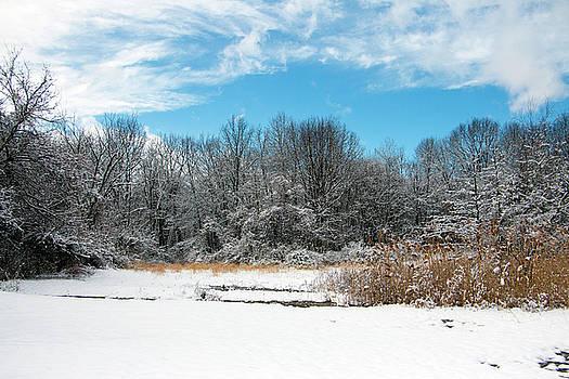 Fresh Snow by Jeff Severson