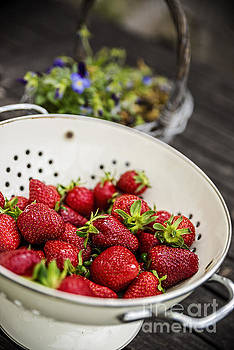 Fresh Strawberries by Tony Priestley