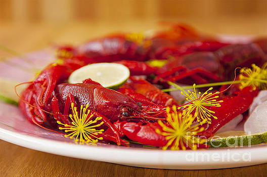 Sophie McAulay - Freshly caught crayfish