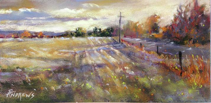 Freshly Plowed by Rae Andrews