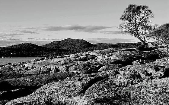 Tim Richards - Freycinet National Park BW