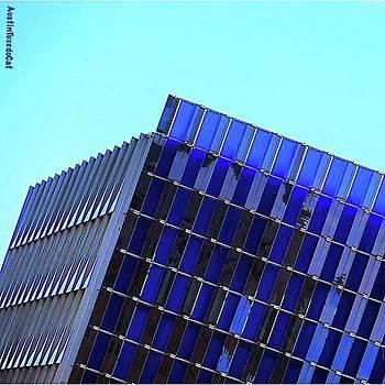 #friday Morning #austin, #texas #blue by Austin Tuxedo Cat
