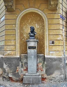 Friedrich Schiller Statue by Erika H