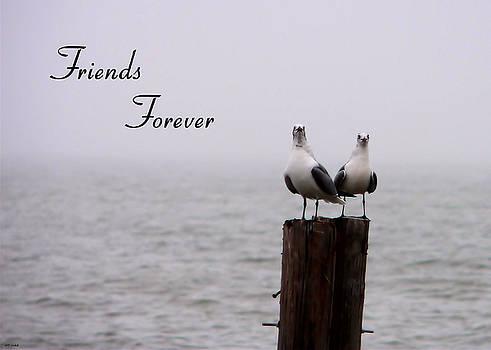 Friends Forever by Kathy K McClellan