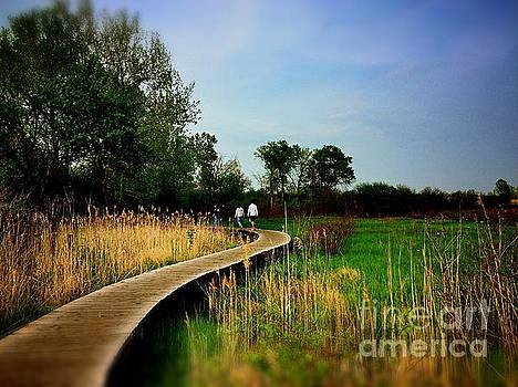Friends Walking the Wetlands Trail by Frank J Casella
