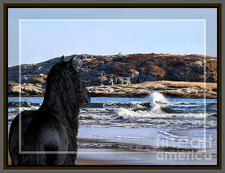 Sandra Huston - Friesian at the Sea, Framed