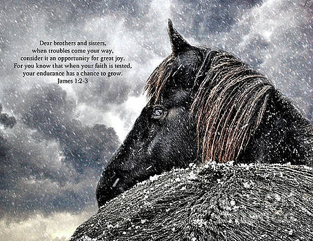 Friesian Mare with bible verse  James 1 2 3 by Lori Ann  Thwing