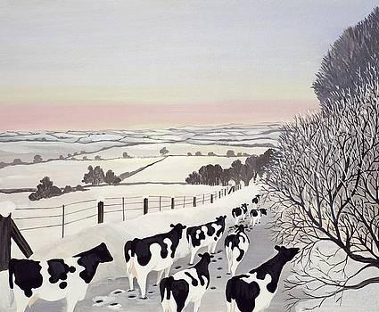 Friesians in Winter by