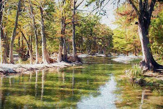 Frio River scene 0156 by Fritz Ozuna