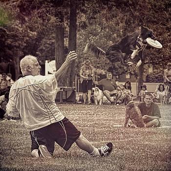 Frisbee Catcher by Lewis Mann