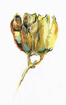 Fritillaria by Frances Marino